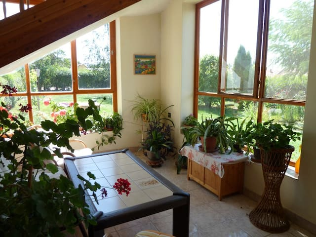 idyllic holiday home in rural area - Kerekegyháza - Appartement