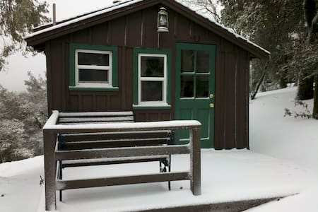 Our cabins were built in the mid-century and have many of the original features and furnishings. We are surrounded by trees and have lovely views of the mountains.  Hike, bike, fish, and relax in the mountains and desert. Come enjoy peace and beauty.