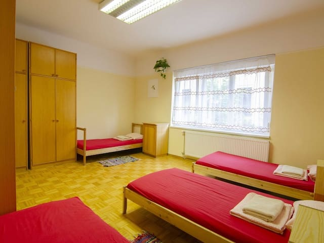 Bed in 4-Bed Dormitory Room. Family Guesthouse GreenSLO