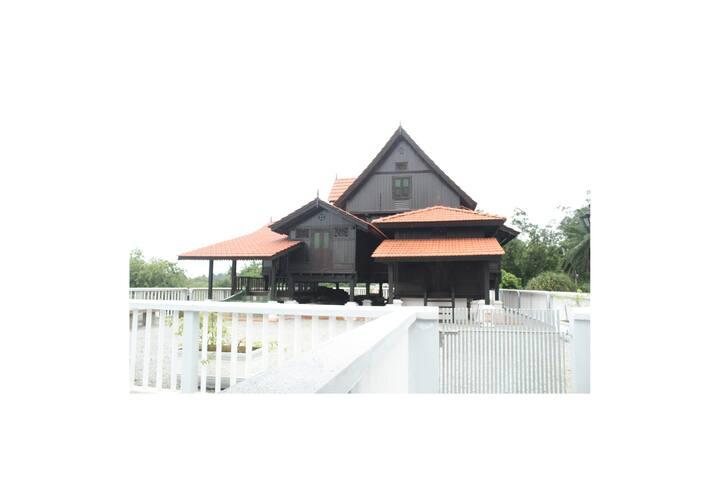 Kaztimberhouse - Pasir Panjang - Guesthouse