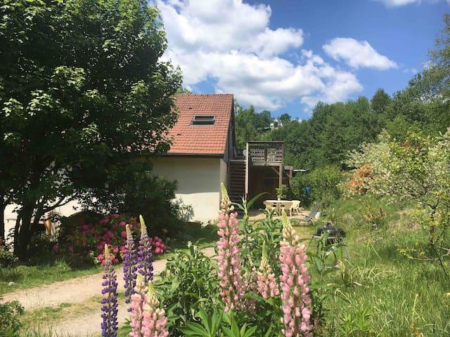 Haute Vosges: Gîte cosy donnant sur la nature