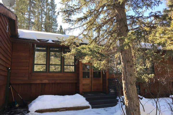 Cabin Home Retreat with full private 2 BR suite.