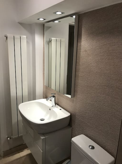 Clean and modern private wash room with shower. At opposite end of apartment from host so very private.