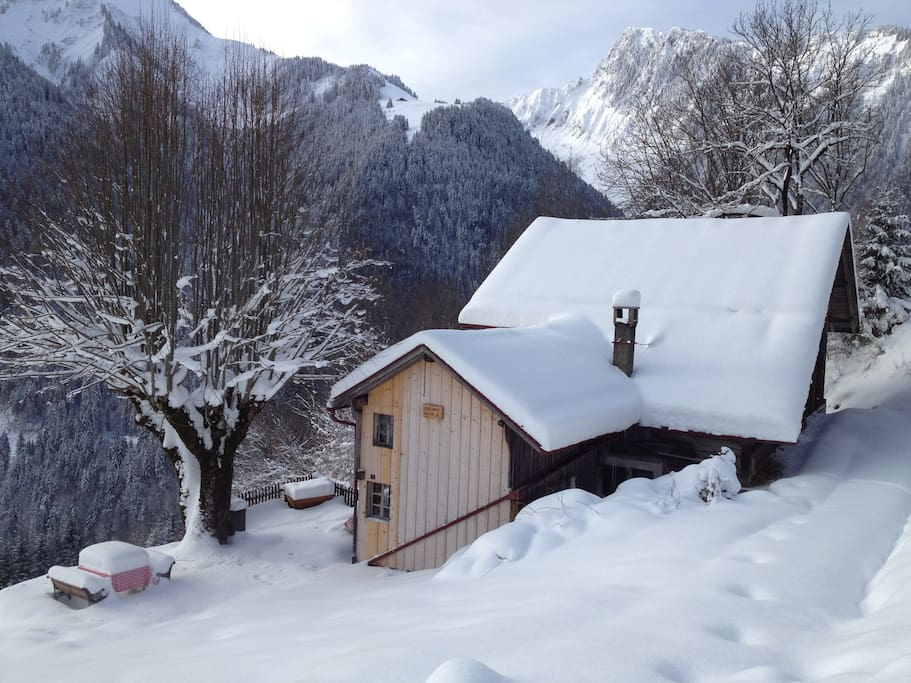 white winter in the Swiss Alps, an unforgetable experience