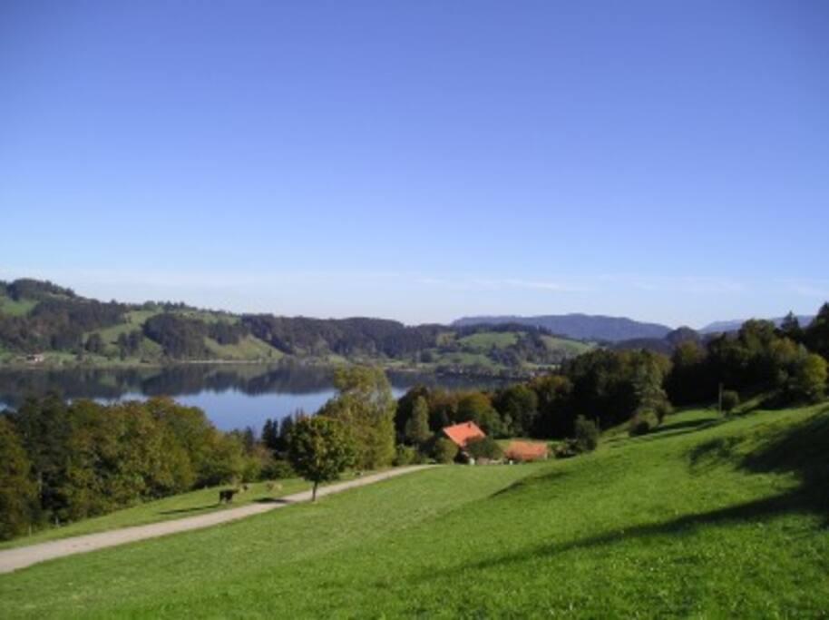 Bergbauernhof Haberstock über dem Alpsee