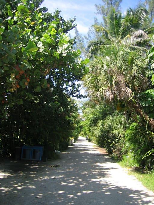 Private lane to beach
