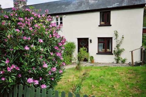 Deer House, cosy cottage,  15 mins Dyfi Bike Park