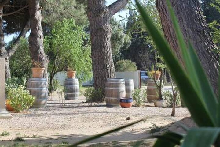 Acacia 2 pers. ds propriété proche mer Wi-fi