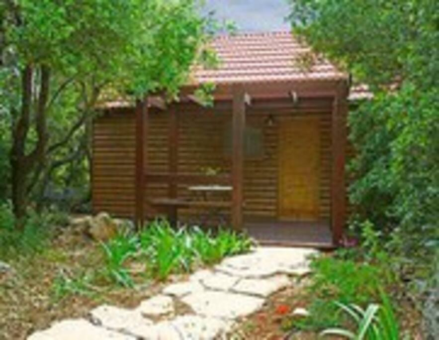 A wood cabin hiding in a natural forest in Abirim, north of Israel