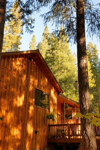 Sierra Solitude at Salmon Creek - Sierra City - Haus