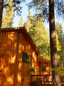 Sierra Solitude at Salmon Creek - Sierra City - Hus