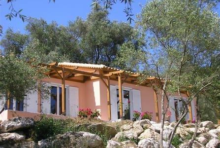 Rafali Lovely New Villa - Agios Georgios