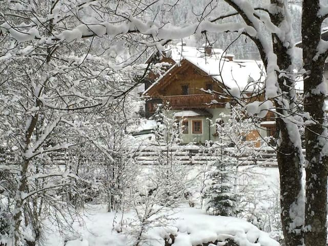 Flachau Huis met uitzicht