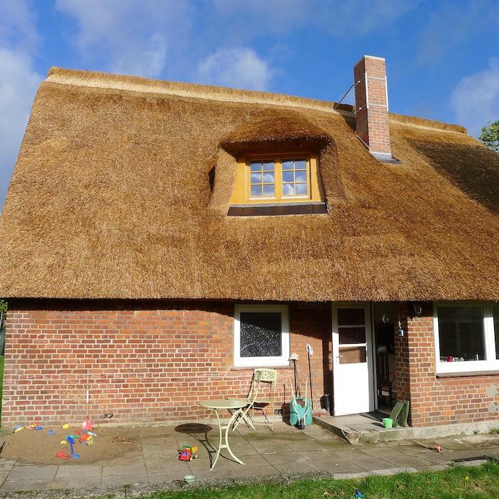 Reetdachhaus auf Resthof im Grünen