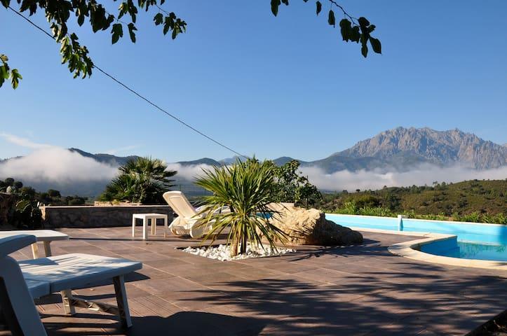 bergerie en pierre avec piscine - Canavaggia - Ev
