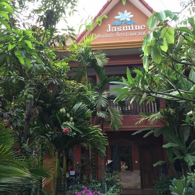 jasmine family hostel garden