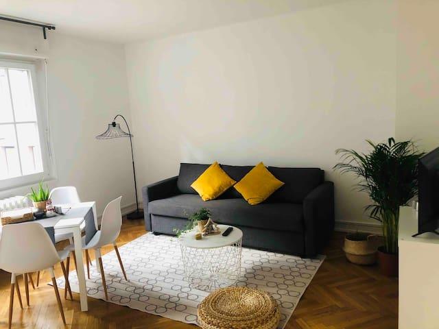 Appartement 2 pièces HYPER CENTRE Strasbourg