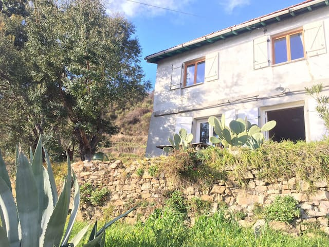 Old wine farm up in the mountains - Castel Vittorio - Appartement