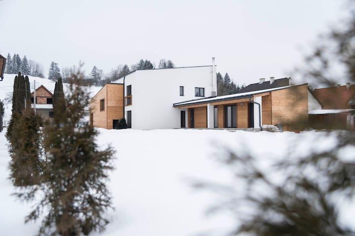 Villa Kasandra - Vlachy - 別墅