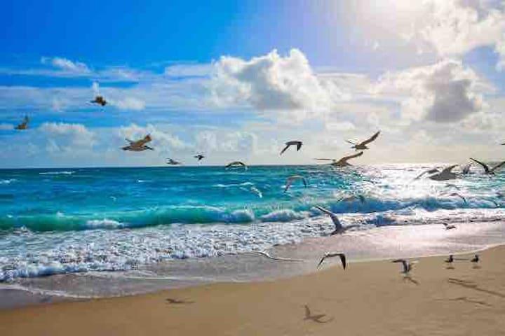 Singer Island Beach 7 min. Drive