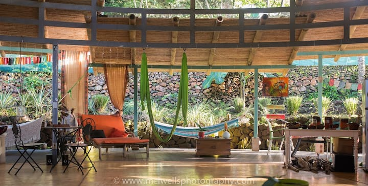 Artist House in the jungle
