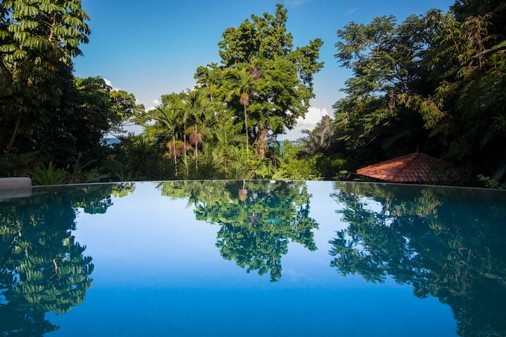 The Waters - Romantic - Beachfront Rainforest
