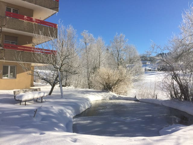 Entspannen am Bach und Teich - Schönengrund