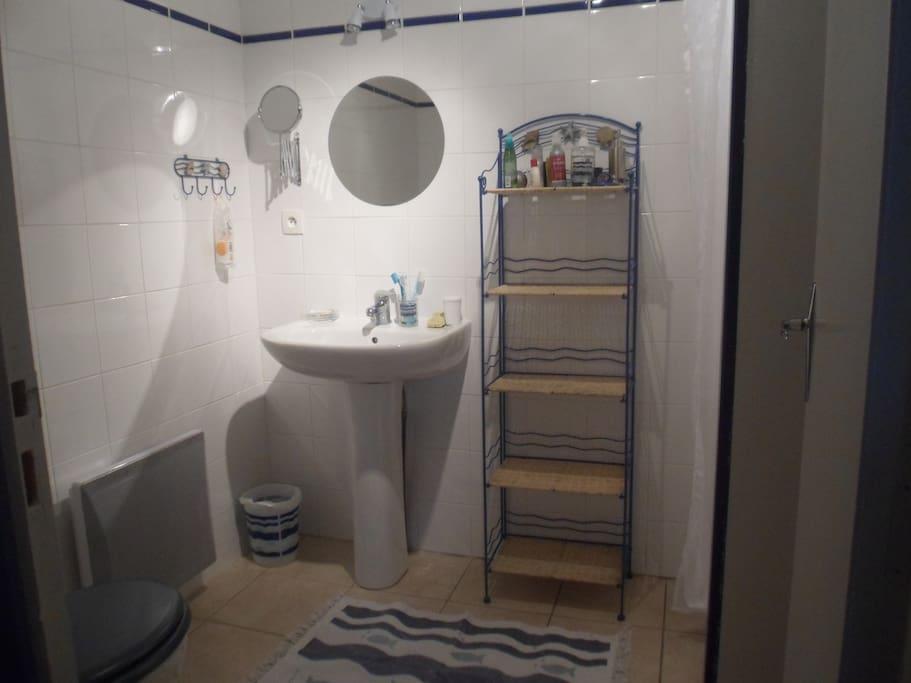 Salle de bain avec douche + WC
