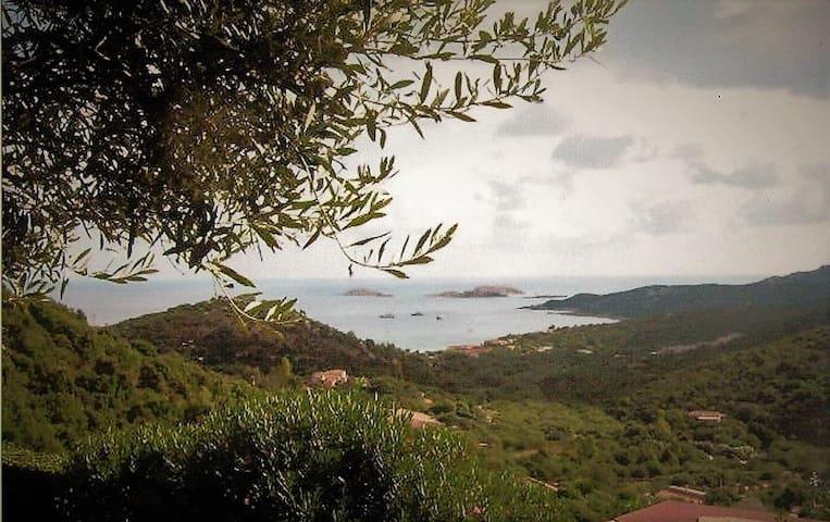 Casa con vista mare - Golfo Pevero - Bungalow