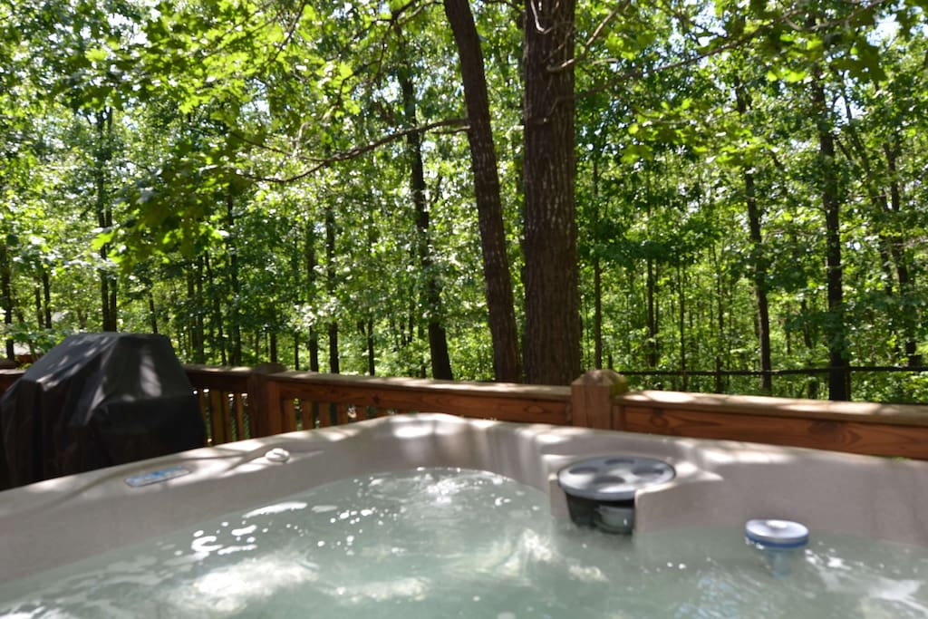 Private Spa backing up to the Ozark woods