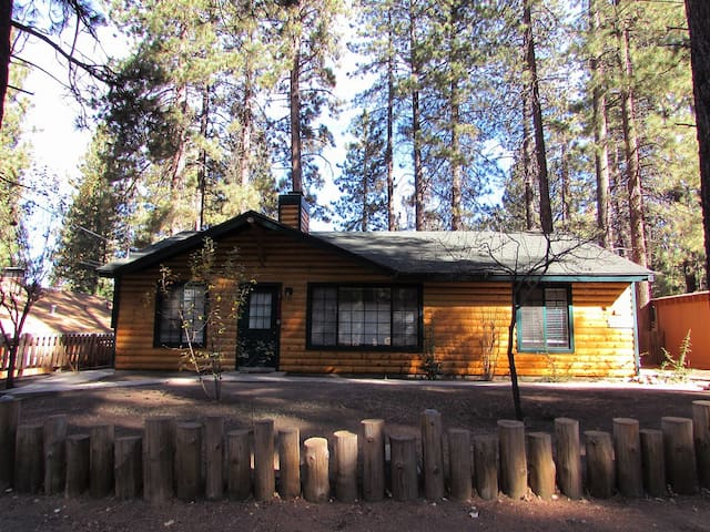 Pet Friendly Log Style Cabin! WiFi! & Fenced Yard