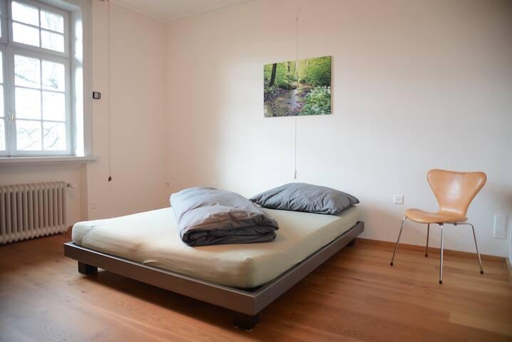 Lovely Bedroom with Dedicated Bath - Bottmingen - Casa de camp