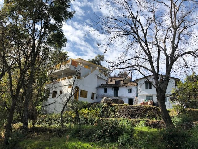 Yellow House in Kasar Devi