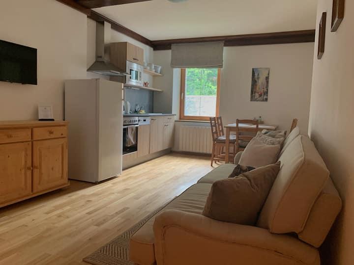 Comfortable apartment for 5 guests near Hallstatt