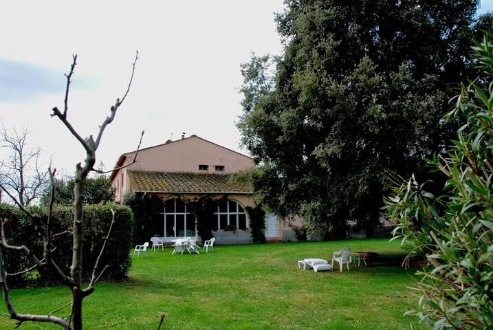 Incredible renovated farm in a beautiful wild park - Donoratico - Apartment