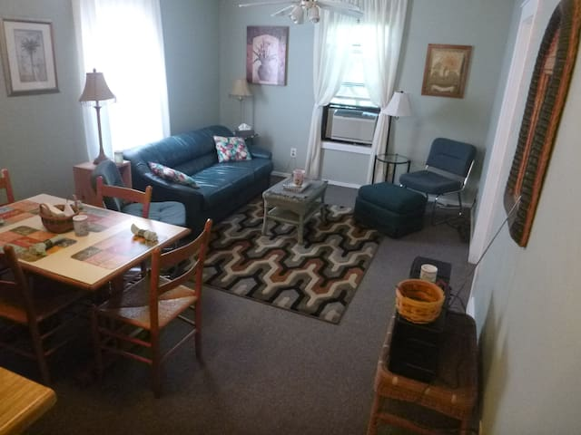 Large Private room & Deck, by Amtrak & Albany WiFi - Rensselaer - Daire