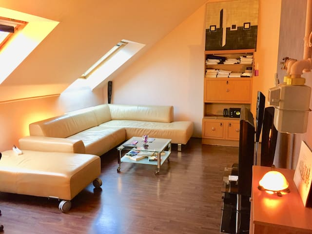 Entire flat(1+1) in center,close to public transp.