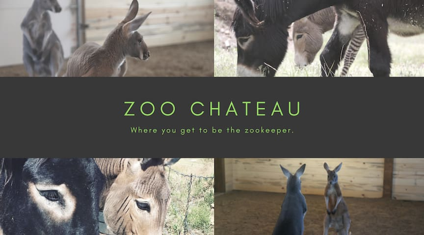 Zoo Chateau - Vacation Rental Zoo - Golden - Casa