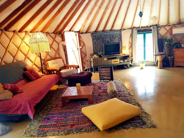 A separate unit  Spacey round yurt, 50 square meters...well equipped with kitchen and private bathroom and sitting corners.. Kids will be fascinating with joyful space. One family of 4 or 5 members can stay very comfortably.