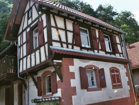 """typisch huis in de Noordelijke Elzas """"S 'Hiesele"""""""