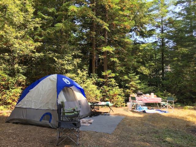 Camp in Your Tent or Park Your Camper Van - (3)