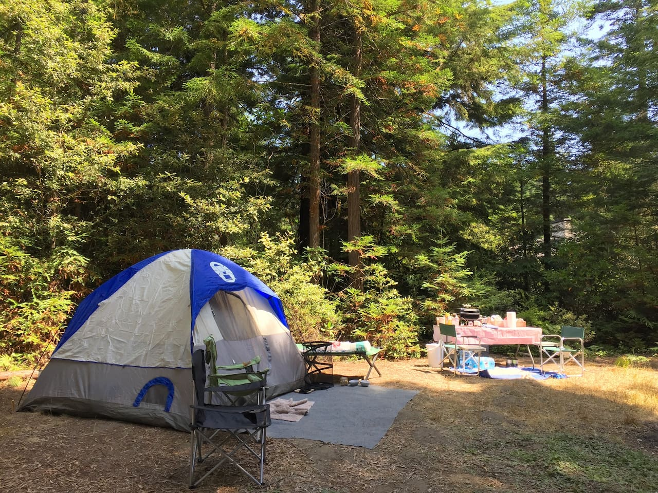 Welcome to private tent camping, small RV or camper van parking amongst the redwoods one mile from Mendocino Village.