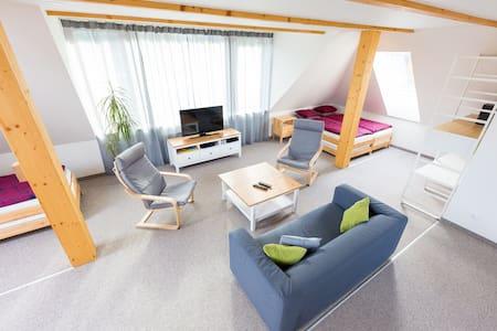 Loft 95m²+PARKING free-Tram150m-Cable TV-PS3-Klima