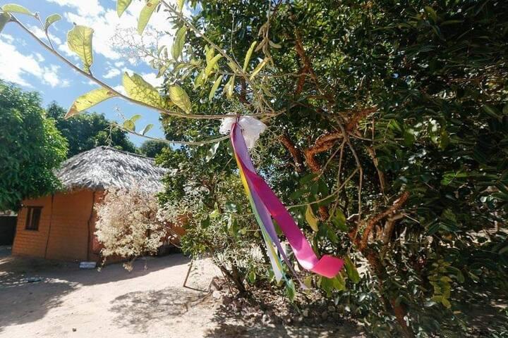 Hostel do Encontro - Vila de São Jorge