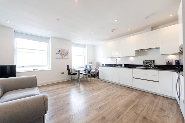 Gorgeous London Apartment (HH75 III)