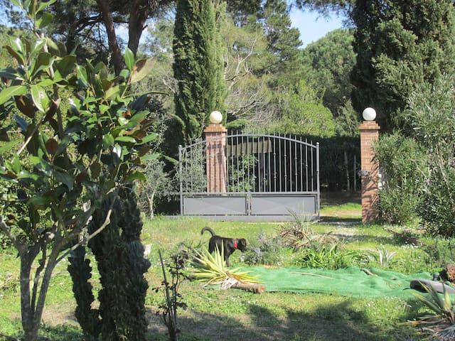 capramatta - Baratti - House