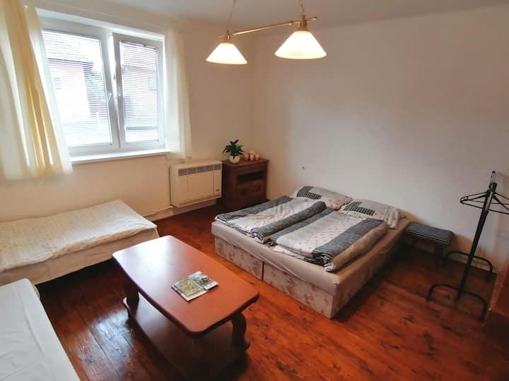 Dom pri Mlyne (izba pre 4)