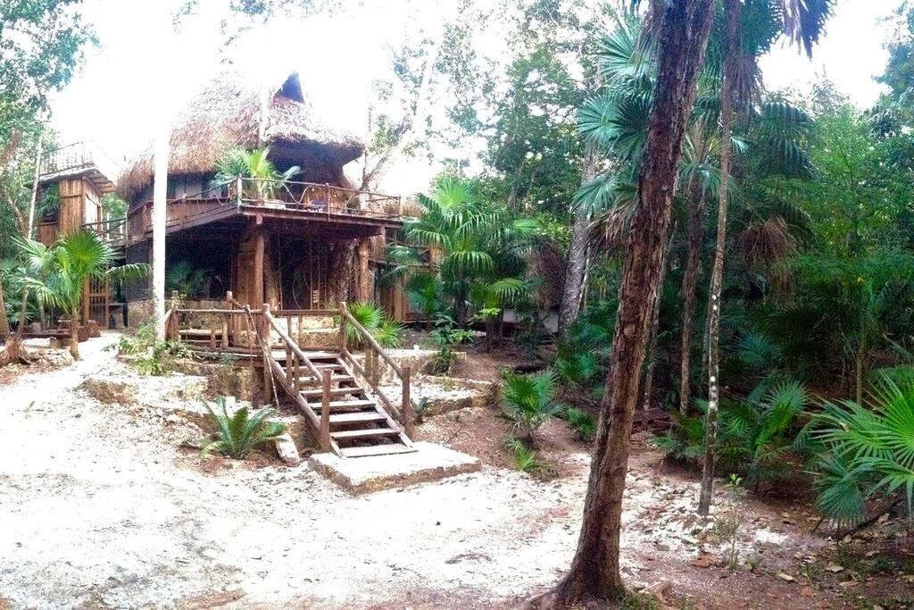 Una casa de la selva