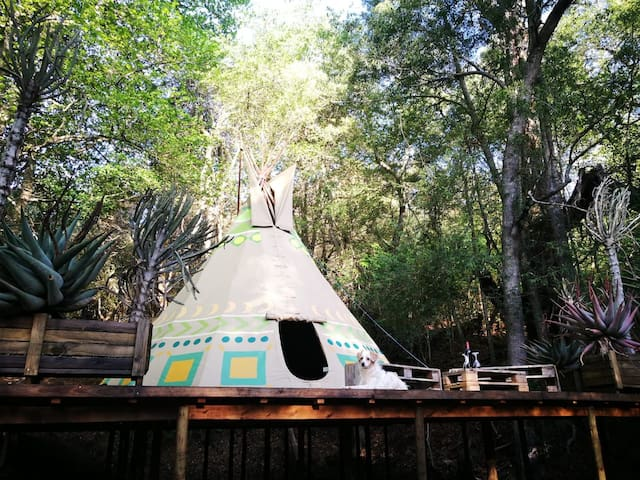 "Magical Teepee Experience!  ""Earth"" 1/4"