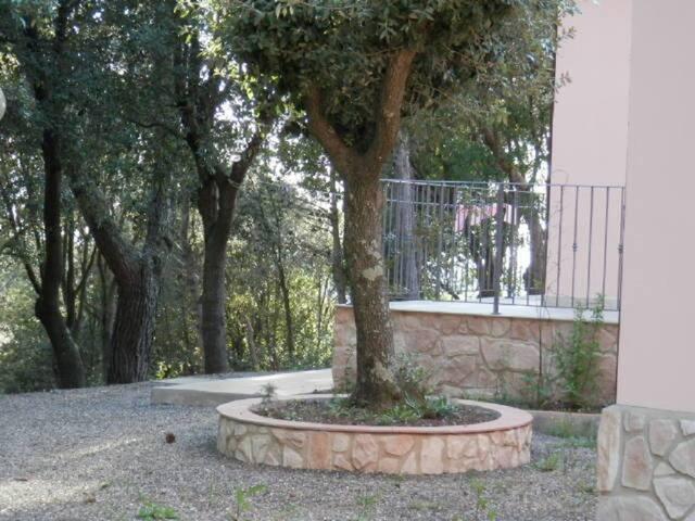 Villa Nibbiaia mit Pool